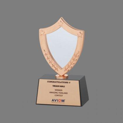 Personalized Aviom Award Trophy