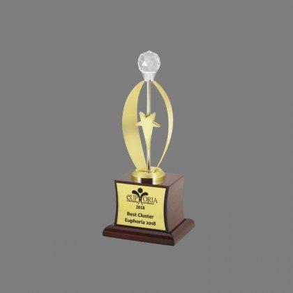 Personalized Euphoria Star Award Trophy