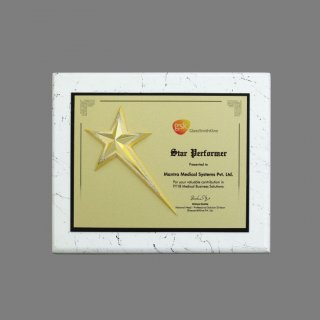 Personalized Gsk Glaxosmith Star Trophy