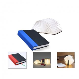 Personalized Mini Book Lamp (G E N E R I C G I F T S - Mini Book Lamp) / Black/Blue, Black/Red