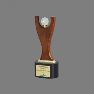 Personalized Nutravo Award Trophy