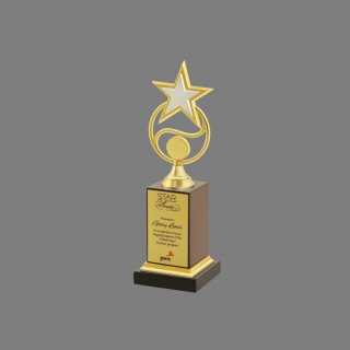 Personalized Pwc Star Award Trophy