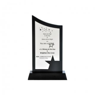 "Personalized Star Communication Engraving Area Trophy (3""X5"")"