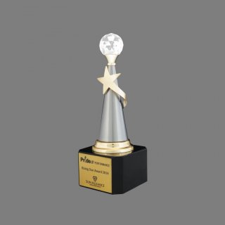 Personalized Sunalliance Star Trophy
