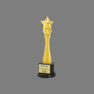 Personalized Trinity Star Award Star Trophy